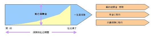 終身保険.jpg